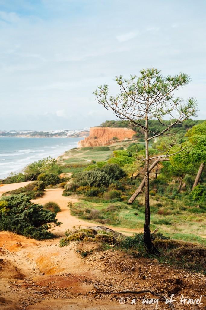 portugal-roadtrip-algarve-praia-falesias-albufeira-19