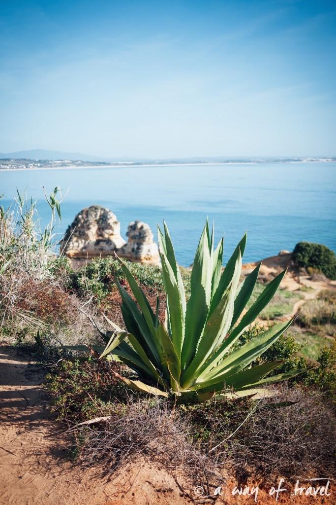 portugal-roadtrip-algarve-sud-surf-combi-5
