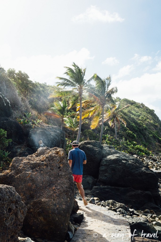 Colombier saint barth martin antilles françaises visiter guide plage barthélemy 12