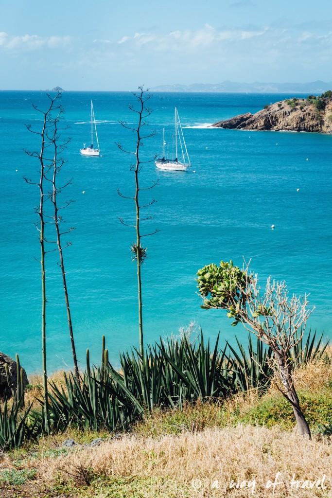 Colombier saint barth martin antilles françaises visiter guide plage barthélemy 8