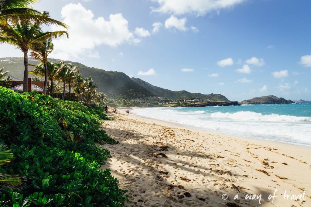 Saint Barth Barthelemy Caraibes Antilles Francaises Anse des Flamands 13