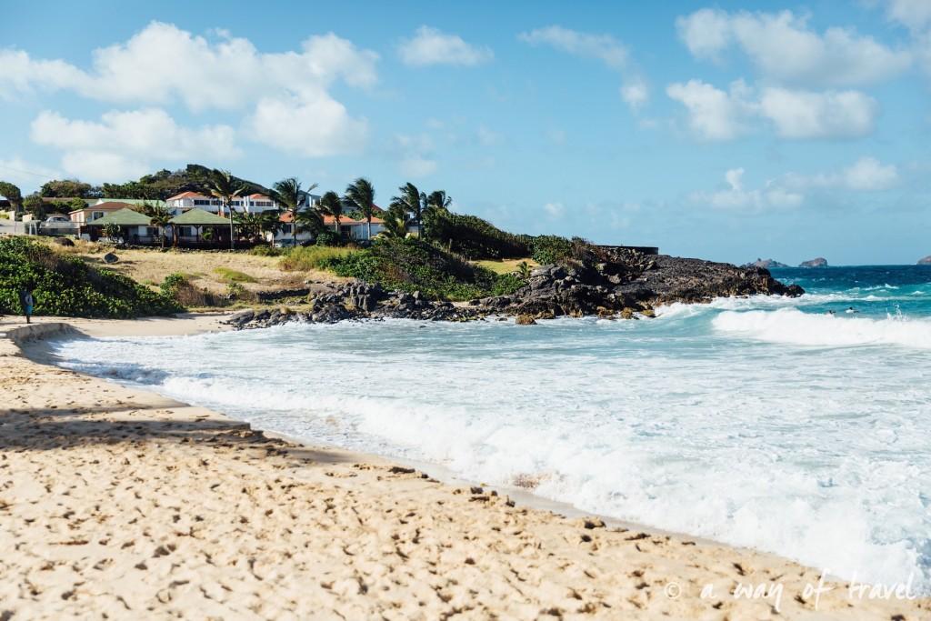 Saint Barth Barthelemy Caraibes Antilles Francaises Anse des Flamands photographe 15