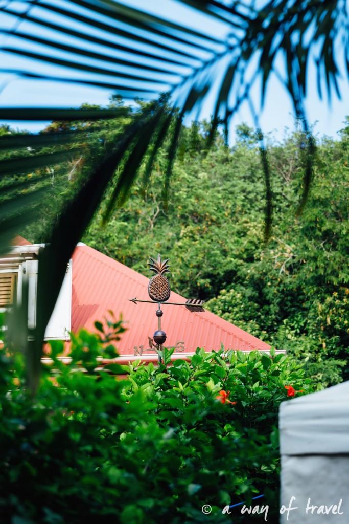 Saint Barth Barthelemy Caraibes Antilles Francaises corossol 25