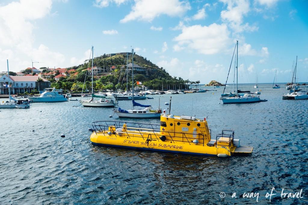 Saint Barth Barthelemy Caraibes Antilles Francaises mariage photographe 4