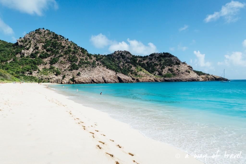 Saint Barth Barthelemy Caraibes Antilles Francaises plage du gouverneur 8