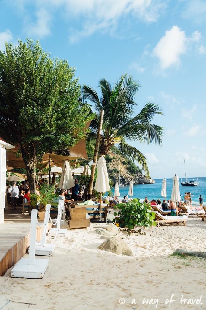 Saint Barth Barthelemy Caraibes Antilles Francaises shell beach 33