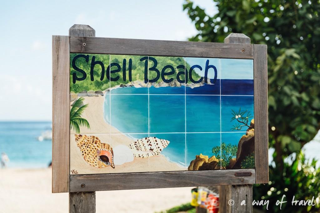 Saint Barth Barthelemy Caraibes Antilles Francaises shell beach 36