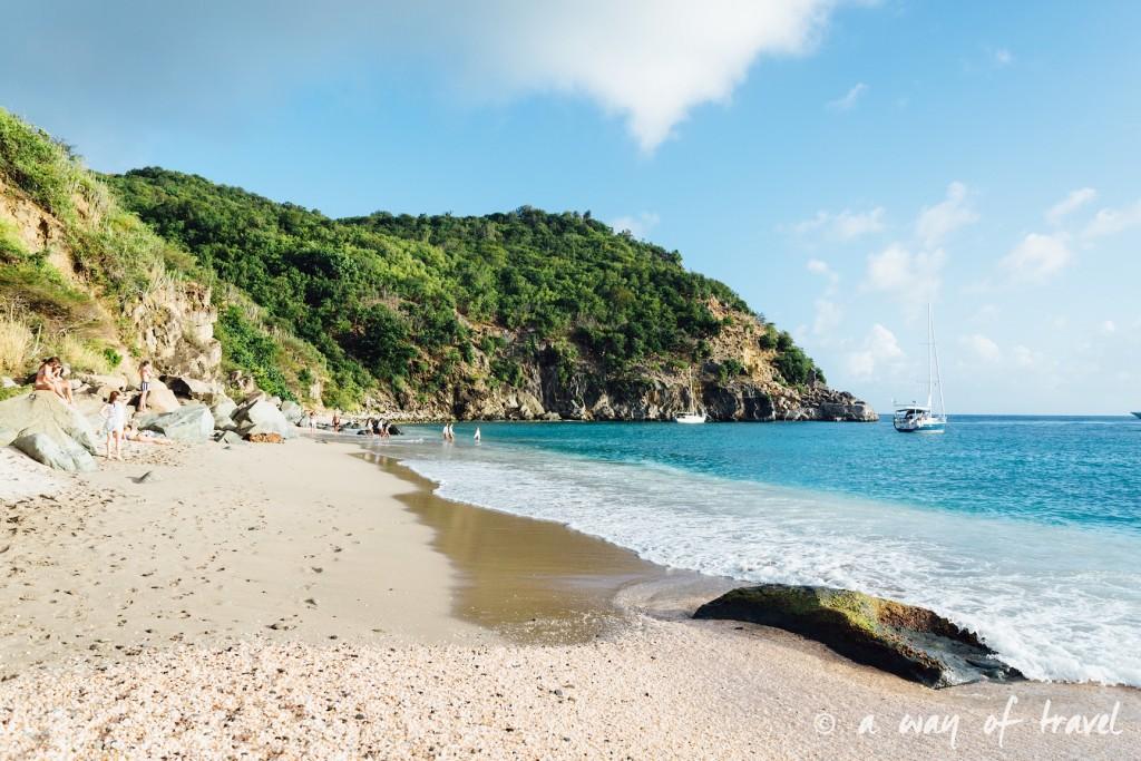 Saint Barth Barthelemy Caraibes Antilles Francaises shell beach 39