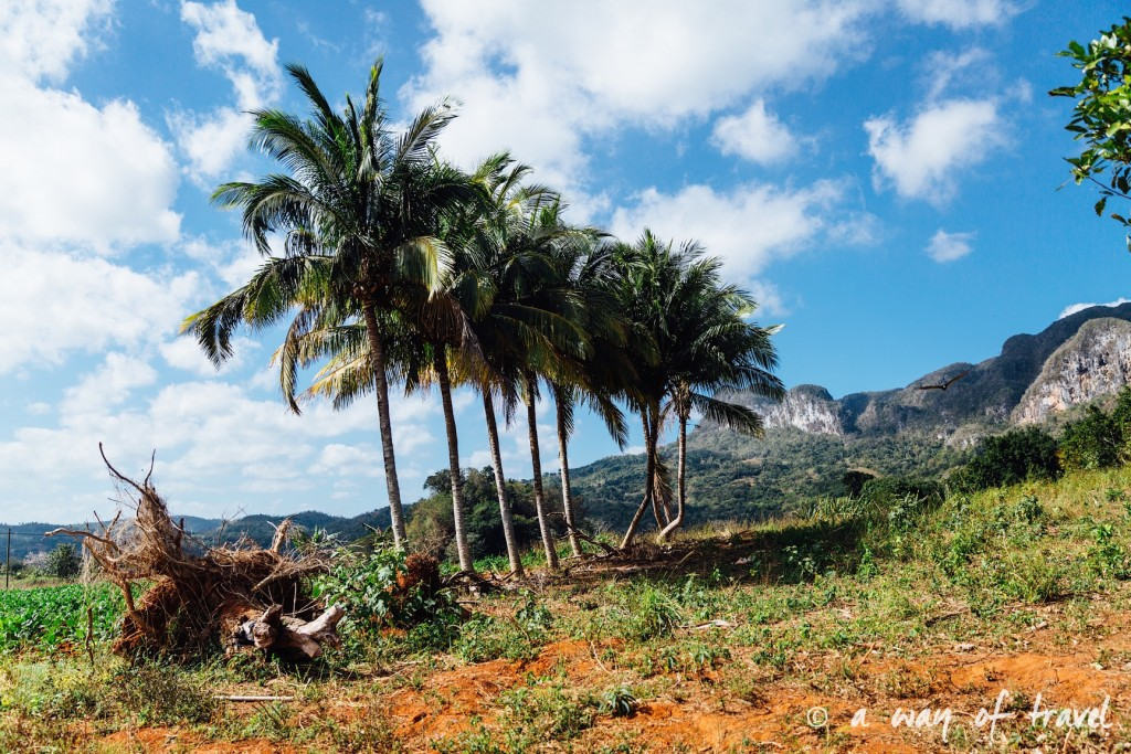 Vinales Cuba Guide Voyage 46