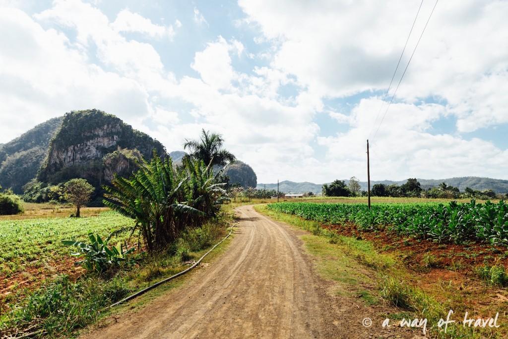 Vinales Cuba Guide Voyage 48