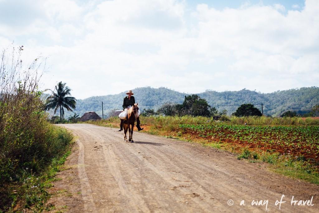 Vinales Cuba Guide Voyage 51