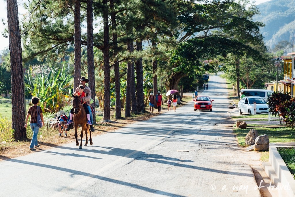 Vinales Cuba Guide Voyage 73