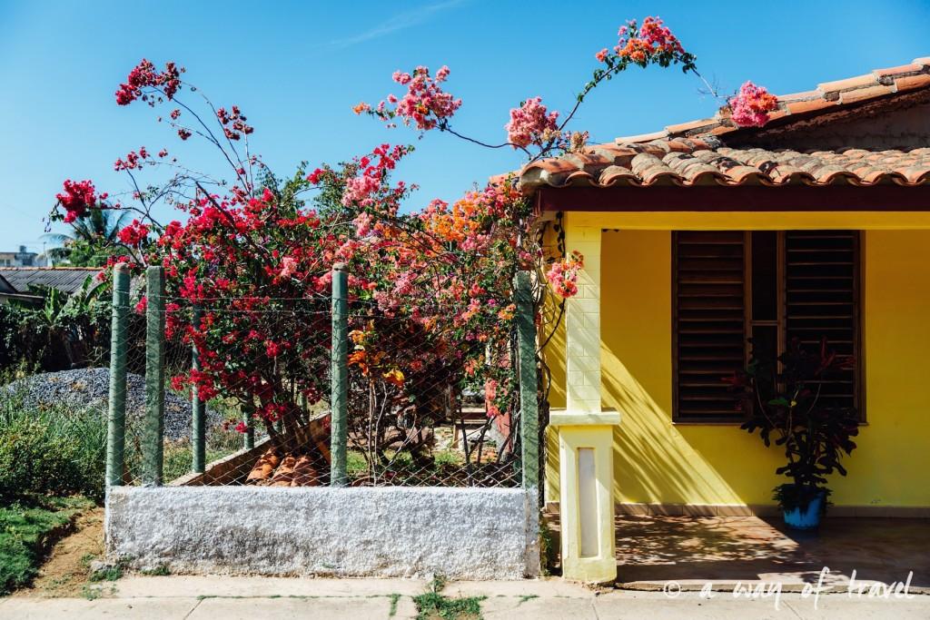 Vinales Cuba Guide Voyage 90