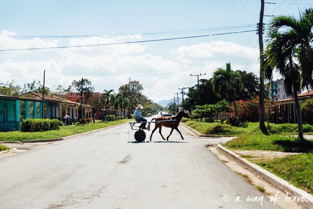 Vinales Cuba Guide Voyage 95
