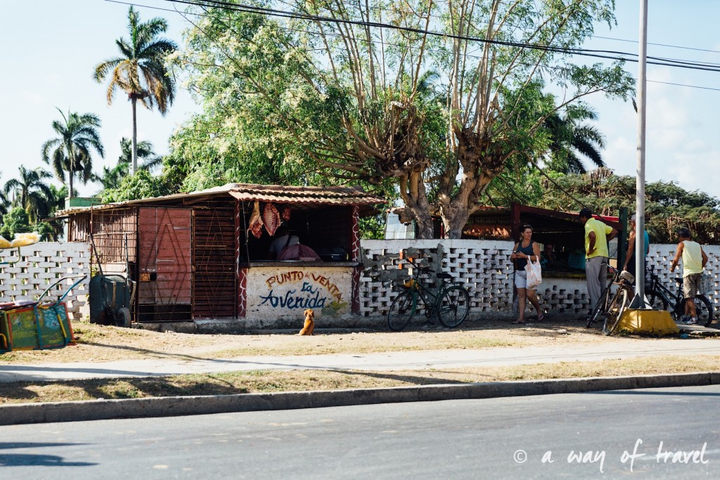 Visiter cuba guide cienfuegos el nicho 27