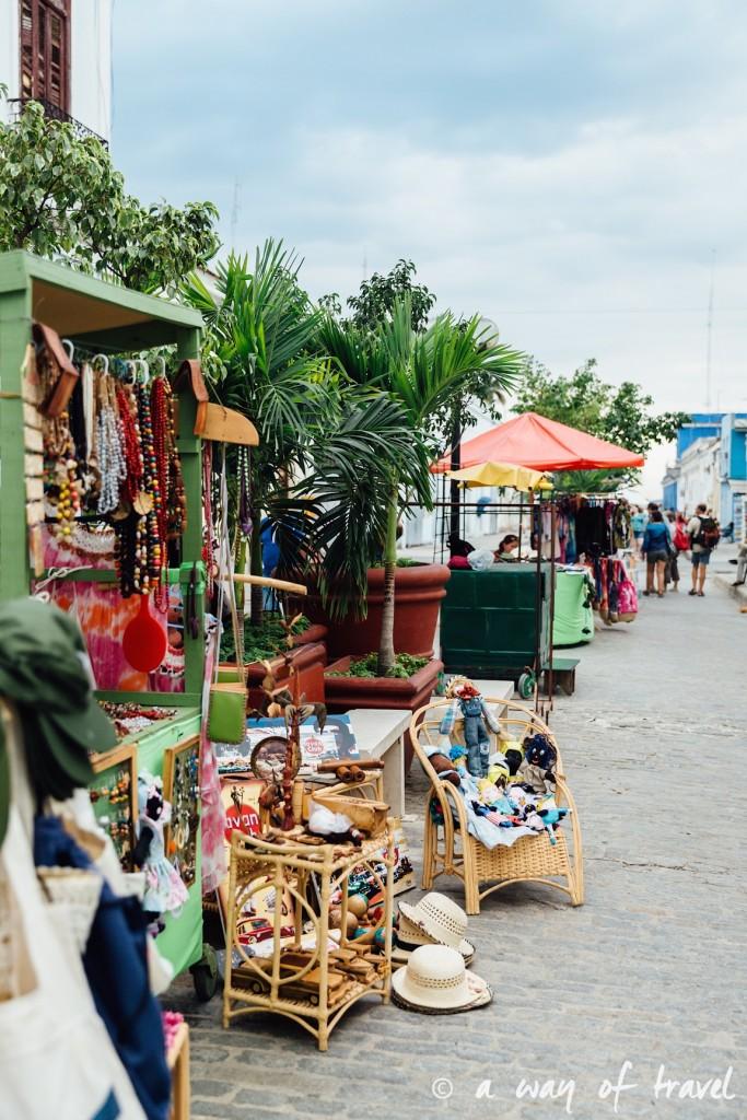 Visiter cuba guide cienfuegos el nicho 5