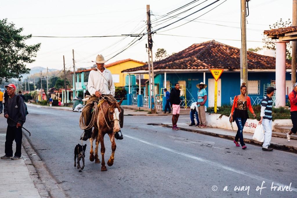cowboy Vinales Cuba Guide Voyage 8