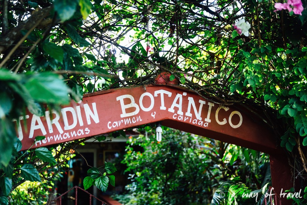 jardin botanique Vinales Cuba Guide Voyage 62