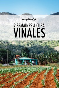vinales guide cuba