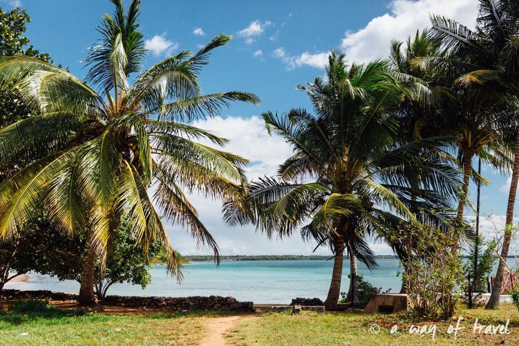 Baie des cochons playa llarga giron cuba 12