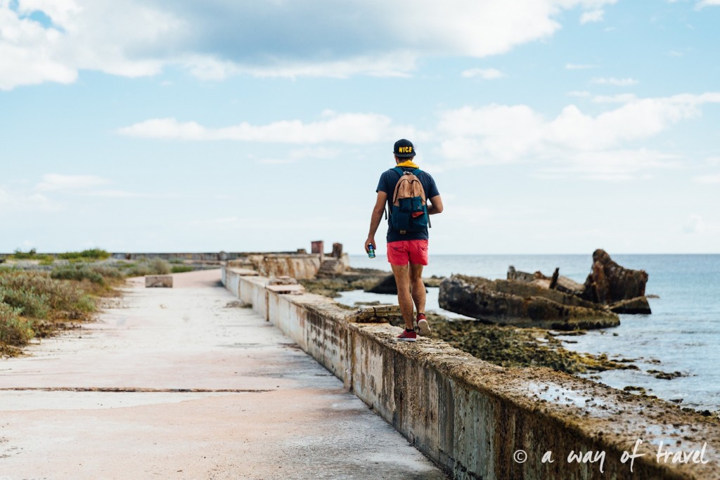 Baie des cochons playa llarga giron cuba 15