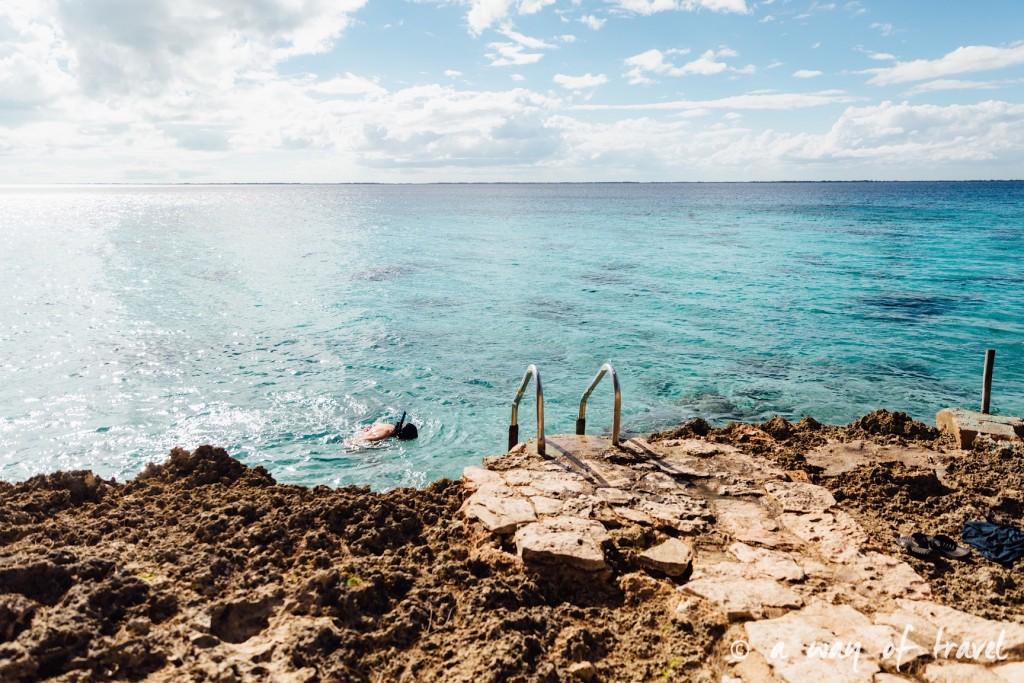 Baie des cochons playa llarga giron cuba 18