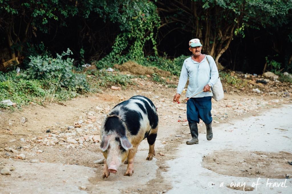 Visiter cuba guide trinidad 40