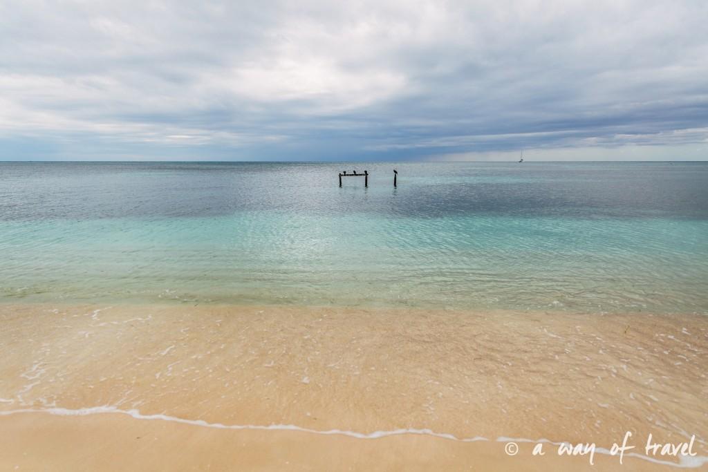 Visiter cuba guide trinidad playa llarga 23