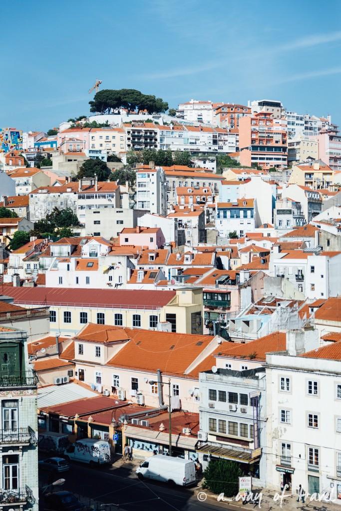 10 Lisbonne topo rooftop 3