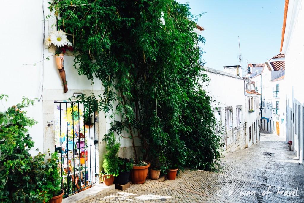 2 Cityguide Lisbonne Visiter Alafama quartier 8