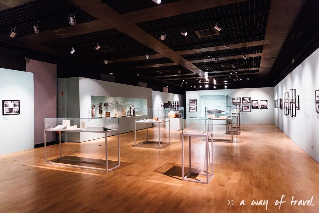 5 Lisbonne muséum histoire naturelle 2