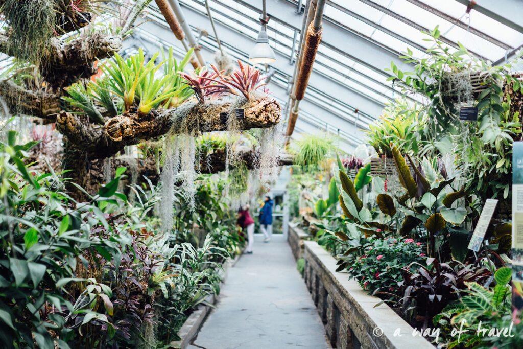 montreal jardin botanique 1