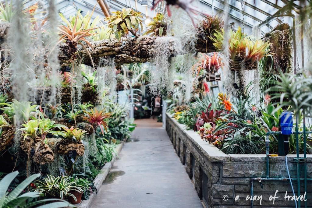 montreal jardin botanique 11