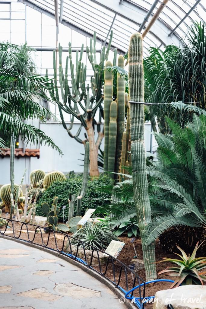 montreal jardin botanique 15
