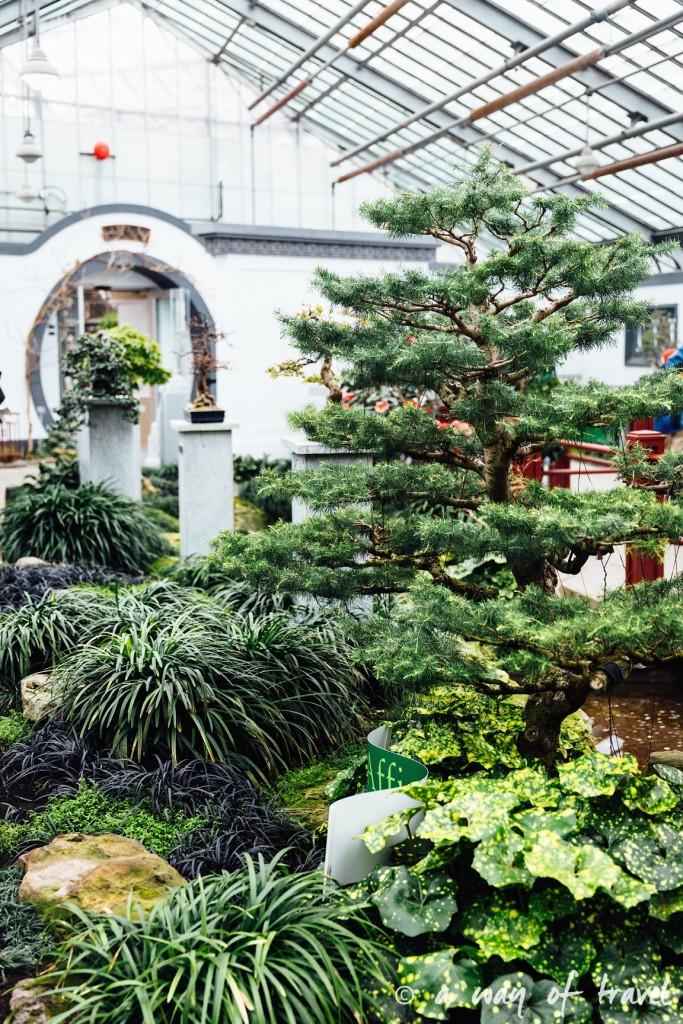 montreal jardin botanique 19
