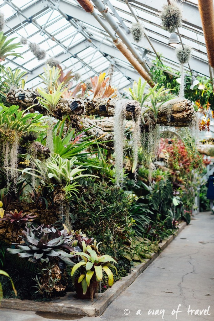 montreal jardin botanique 2