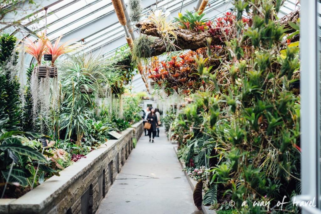 montreal jardin botanique 5