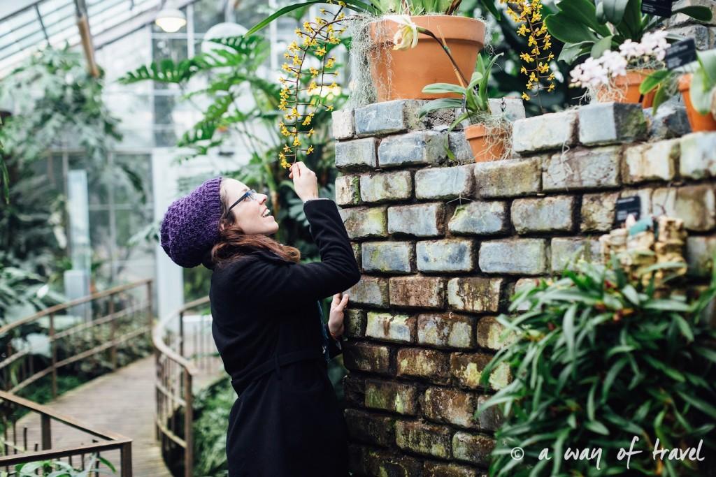 montreal jardin botanique 7