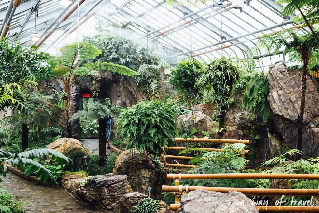 montreal jardin botanique 9