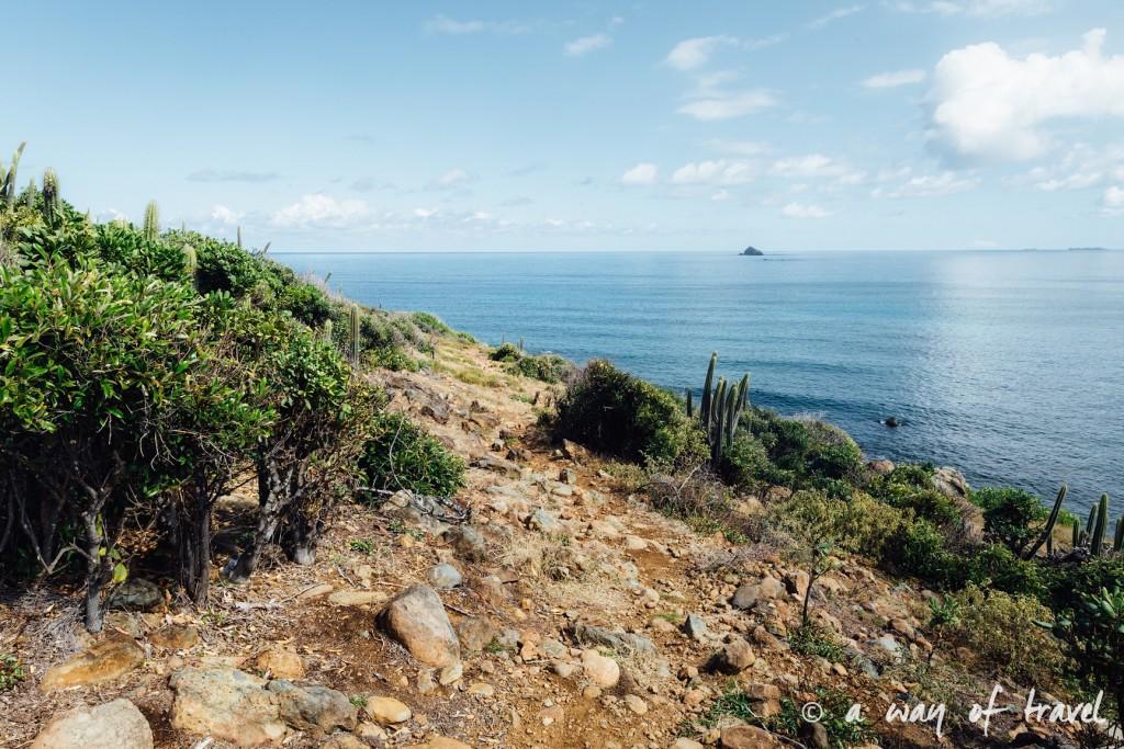 Saint Martin Caraibes Piscines naturelles Sint Maarten guana Bay 13