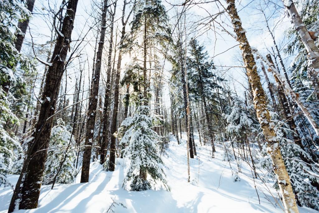 Visiter le quebec hiver 59
