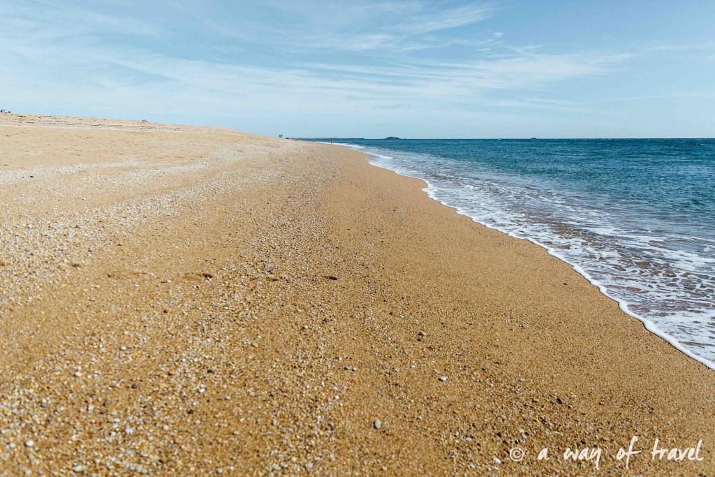 La Trinite sur mer visite port guide bretagne-9