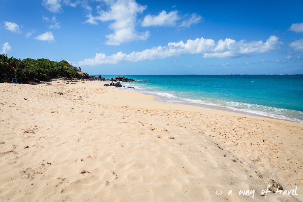 sxm sint maarten saint martin plages guide beach happy bay 5